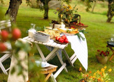 Пикник-на-природе