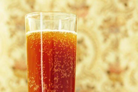 Kvas iz tsikoriya v domashnikh usloviyakh retsept s sukhimi drozhzhami